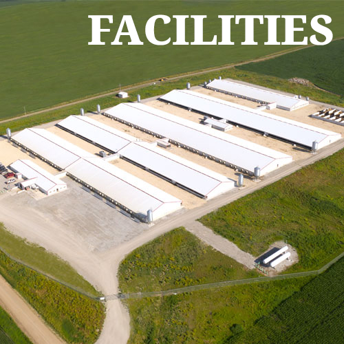 Facilities at LEI